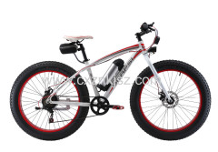 Electric Bicycle (Snow Bike)