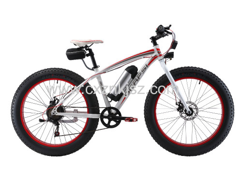 Electric Bicycle (Snow Bike)