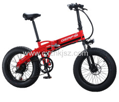 Electric Bike (Snow Bicycle)