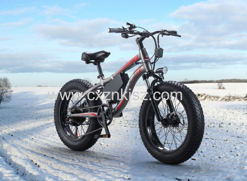 Electric Snow Bicycle Bike
