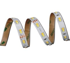 LED light strips 24V 2835 CCT adjustable