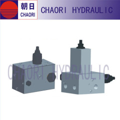 Special purpose valve for hydraulic cylinder