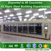 metal storage buildings kits and structral steel workshop to Egypt customer