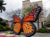 Giant inflatable butterfly for advertising