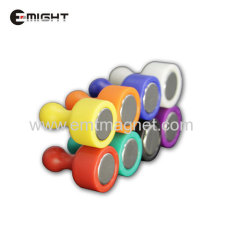 Plastic Pin magnet Magnetic Assembly Disc D12