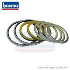 DUST SEAL DLW-VAW SEAL