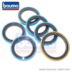 FORKLIFT SEALS&KIT FORKLIFT CYL PISTON SEAL