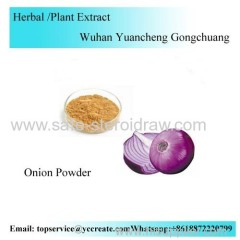 Onion Powder/Onion Extract Powder Fruit juice powder