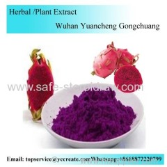 Dragon Fruit Extract Powder Water -Soluble Pitaya Powder