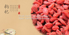 supply Chinese authentic goji berry/wolfberry Organic Medlar
