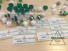 Human Growth Hormone hgh 191aa 10iu/8iu by Kirobiotech
