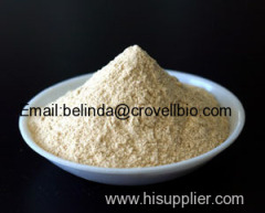 Best quality Xanthan Gum price competitive
