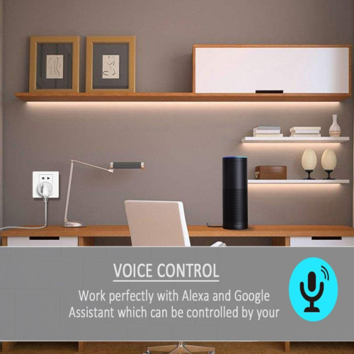 WiFi Control Smart Timer Outlet with USB Port