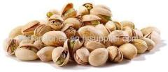 Quality Pistachio nut Best Price