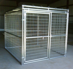 Galvanized welded wire mesh modular nice dog kennel