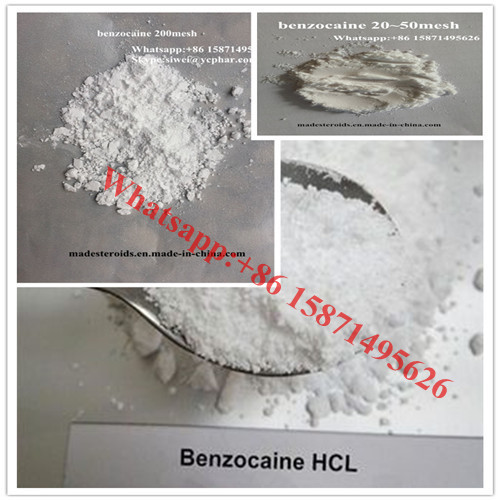 99% Purity Local anesthetics Benzocaine with 20-50 Mesh for Pain Reliever