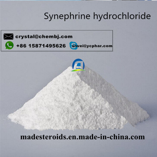 Safe shipping Synephrine Hydrochloride CAS 365-26-4 Weight Loss Raw Powder