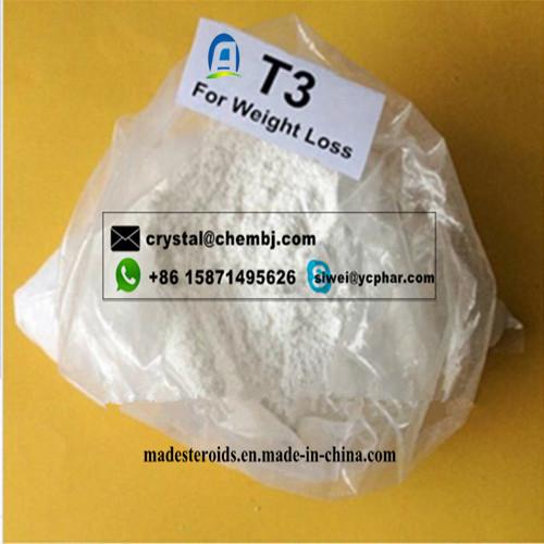 Fat Burning L-Triiodothyronine CAS 55-06-1 for Bodybuilding T3 Prohormone Supplements Liothyronine Sodium