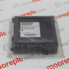 GE Fanuc IC300OCS301 MODULE **New**