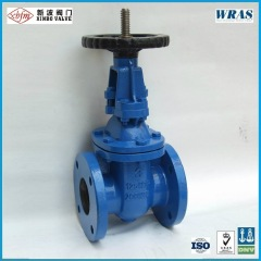 ANSI-125/150 Cast Iron Gate Valve