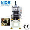 Automatic stator coils shape expanding and forming machine