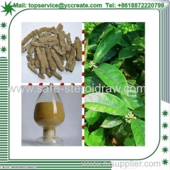 Plant Extract Indian Mulberry/Morinda Root Extract