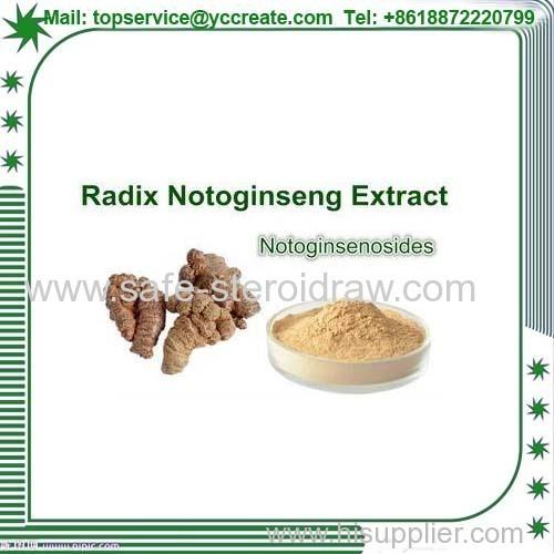 Panax Notoginseng Extract Panax Notoginseng Extract