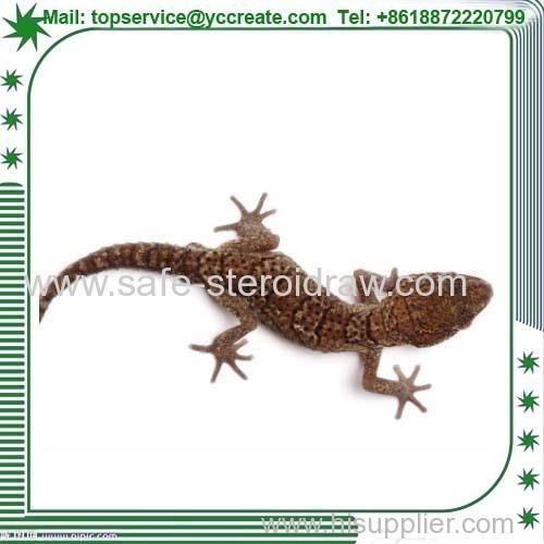Animal Extract okay Gecko Peel Extract