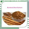 100% Natural Burdock Root Extract Arctiin