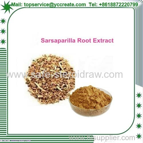 Natural Sarsaparilla Root Extract Plant Extract