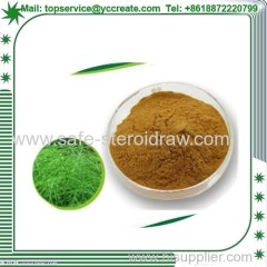 Silica Acid/ Horsetail Extract /Horsetail For Male Health