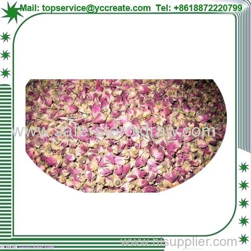 Rose Extract/Rose Powder Factory Supply