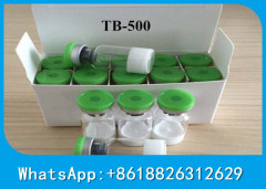 Protein Peptide Hormones Thymosin Beta 4 /Tb500/Tb-500 Lyophilized Powder for Bulking Cycle