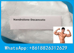 Nandrolon decanoate injectable anabolic steroid white crystalline powder Nandrolon decanoate injecta