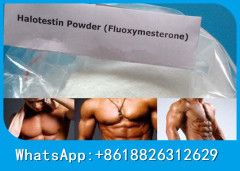 Bulking Cycle Halotestin Test Anabolic Steroid Fluoxy