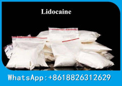 Supply Local Anesthetic Drug Lidocaine HCL Raw Powder For Antiarrhythmic CAS 73-78-9