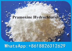 CAS 637-58-1 Anesthetic Anodyne Local Anesthetics Pramoxine Hydrochloride Pramoxine HCl