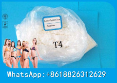 CAS 51-48-9 Weight Loss Steroids Prohormone Powder L-Thyroxine(T4)