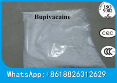 Raw Steroid Powder Local Anesthetic USP Standard Bupivacaine Hydrochloride Bupivacaine HCL