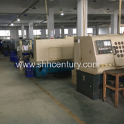 Shanghai Century Industry Co.,Ltd