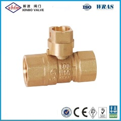 Fxf Brass Gas Ball Valve with Square Head