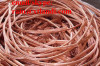 copper wire copper wire copper wire copper wire copper wire copper wire copper wire copper wire copper wire copper wire