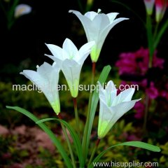 Color Changing Solar Lily Flower Outdoor Stake Lighting