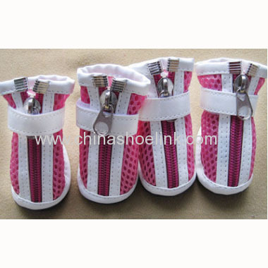 Easy wear shoes for dogs suppling directly from China manufacturer