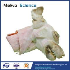Medical median sagittal section of dog head and neck plastinated specimen