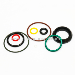 Customized O-Ring in Vmq