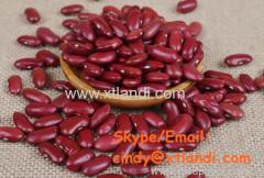 красная фасоль фасоль красная фасоль китайский поставщик высокое качество