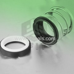Replace AES P03 Mechanical Seals