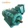 Best price 3kv 6kv three phase induction motor