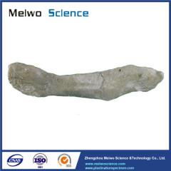 Pig spleen plastinated specimen